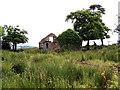 H5459 : Derelict farm, Tullanafoile by Kenneth  Allen