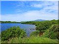 SD1778 : Hodbarrow Nature Reserve, Millom, Cumbria by Gary Rogers