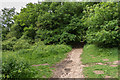 TQ0349 : Drove Road by Ian Capper