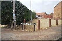 TF6830 : Mountbatten Rd by N Chadwick
