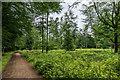 TQ0848 : Netley Park by Ian Capper