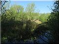 TF9029 : End of Hempton Marsh by Hugh Venables