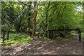 TQ1049 : Blind Oak Gate by Ian Capper