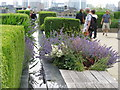 TQ3280 : Water feature, flower beds, topiary, Nomura roof garden by David Hawgood