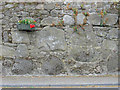S7350 : Wall Flowers by kevin higgins