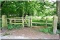 SD7312 : Redundant gate posts by Philip Platt