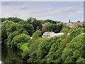 SD7806 : Irwell Riverbank, Radcliffe by David Dixon