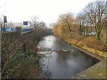 SJ9698 : River Tame by Gerald England