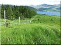 NN0640 : Fence above Loch Etive by wrobison