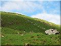 NN0741 : Fence and boulders on Beinn Trilleachan by wrobison