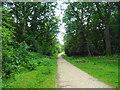 SU3006 : Beechen Lane by John M