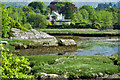 V8050 : Coast, Adrigole Harbour by Mick Garratt