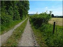 NS3977 : Farm track at Kilmalid by Lairich Rig