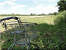 TG2103 : Abandoned supermarket trolley by Adrian S Pye