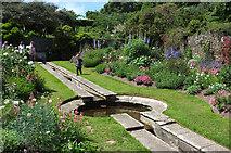 SX9050 : Rill garden, Coleton Fishacre by Derek Harper