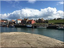 NT6779 : A View Looking Across Victoria Harbour Dunbar by Jennifer Petrie