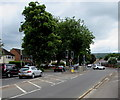 SO9622 : Twin pelican crossings, Priors Road, Cheltenham by Jaggery