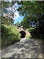 TM2547 : Railway Bridge over Sandy Lane by PAUL FARMER