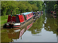 SJ8612 : Moored narrowboats east of Wheaton Aston in Staffordshire by Roger  Kidd