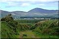 V3698 : Boreen to Cill Mhic an Domhnaigh by Mick Garratt