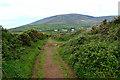 V3697 : Boreen to Cill Mhic an Domhnaigh by Mick Garratt