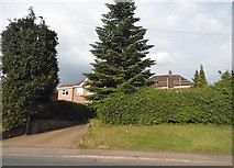 SO9673 : Birmingham Road, Catshill by David Howard