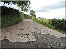 H5559 : Concrete lane, Garvaghy by Kenneth  Allen