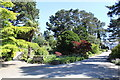 SH8378 : Garden at Welsh Mountain Zoo by Richard Hoare