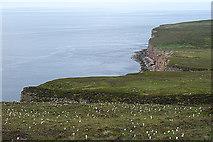 ND1799 : Looking towards Rora Head by Anne Burgess