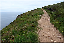 ND1898 : Path to the Old Man of Hoy by Anne Burgess