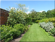 TL8425 : The Walled Garden at Marks Hall Park by Marathon