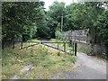 SJ8641 : Park Drive, Trentham by Jonathan Hutchins