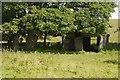 NY8992 : Ruined shed by Richard Webb