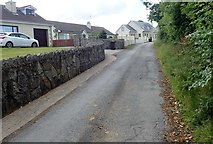 J0125 : Recently built housing at the northern section of Aghmakane Road by Eric Jones