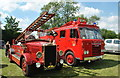 ST9683 : Somerford Show, Great Somerford, Wiltshire 2015 by Ray Bird