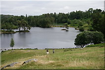 SD3299 : Tarn Hows by Peter Trimming