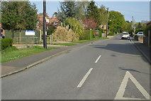 TF6830 : Manor Rd by N Chadwick