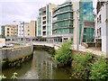 S6011 : Waterford, John's River by David Dixon
