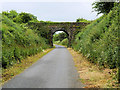 S5010 : Old Bridge on the Waterford Greenway near Kilmeadan by David Dixon