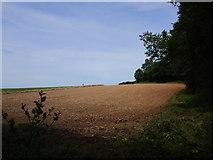 SO8534 : The edge of Aggberrow Wood by Jonathan Thacker