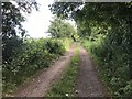 SJ8151 : Track parallel to old railway line by Jonathan Hutchins