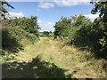 SJ8151 : Farm track crossing old railway trackbed by Jonathan Hutchins