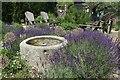 TQ8614 : Open garden : Week 26