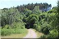 SO2001 : NCR 466 under transmission line near Aberbeeg by M J Roscoe