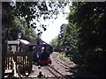 NT9338 : Heatherslaw railway station by Tim Glover