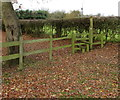 SJ7608 : Wooden stile at the edge of Coppice Green Lane near Shifnal by Jaggery