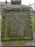 TG4919 : Names of the fallen on the Winterton war memorial 3 by Helen Steed