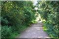 SO8694 : The South Staffordshire Railway Walk by Bill Boaden