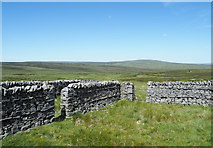 NY7724 : Sheepfold on north-west slope of Little Fell by Trevor Littlewood