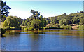 TQ4551 : The Lake at Chartwell by Roger Jones